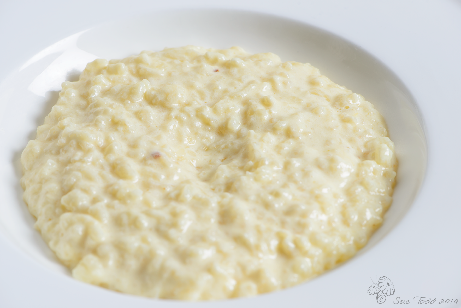 Rich and creamy traditional rice pudding © Sue Todd 2014