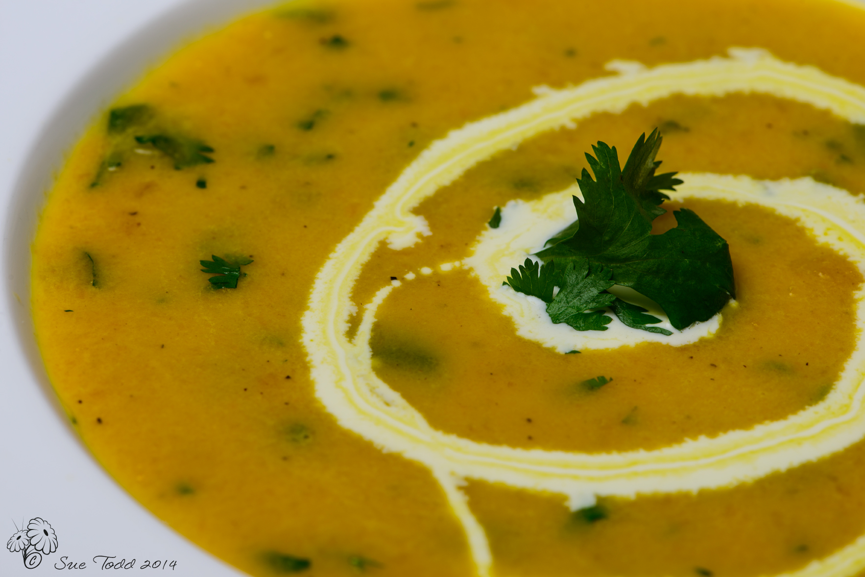 Carrot and Coriander Soup - close up © Sue Todd 2014