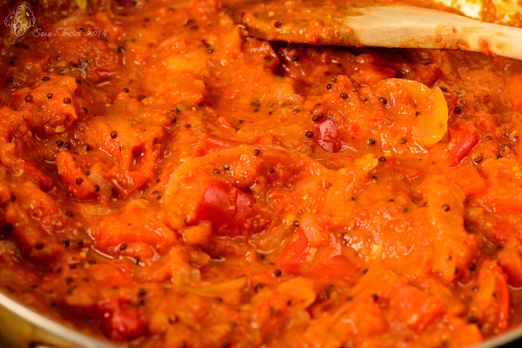 Tomato and Pepper Ketchup © Sue Todd 2014