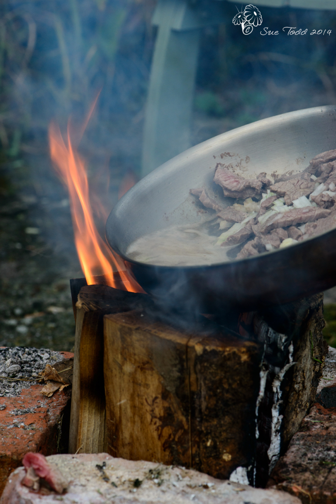 Beef Stroganoff cooked outdoors on a Finnish Stove © Sue Todd 2014