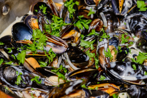 Moules Marinière © Sue Todd Photography 2016